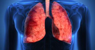 respiração-pulmonar-humana